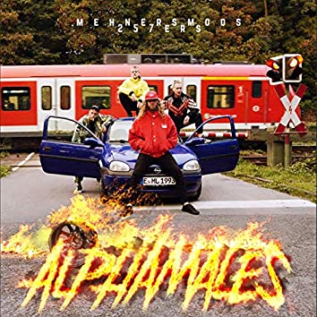 Alphamales