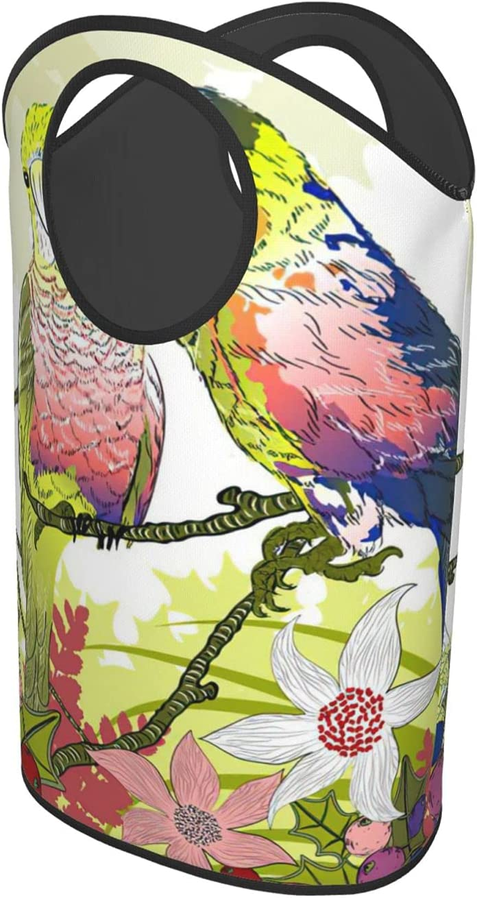 budgie birdsLaundry Hamper Foldable Our shop OFFers the best service Or At the price of surprise Upright for Clothes Bag