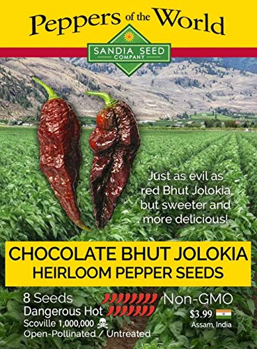 Chocolate Bhut Jolokia Ghost Pepper - 10 Seeds - Non-GMO - Hot and...