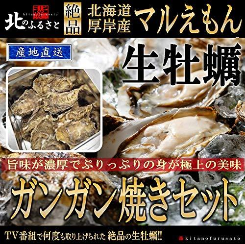 北海道厚岸産「極上」生 牡蠣 殻かきガンガン焼セットLLサイズ×20個(カキナイフ・軍手・ガンガン焼缶) 48時間オゾン・紫外線殺菌処理を施してあるので、安心・安全の品質です。一年中生で食べられるクオリティを保持しています。キャンプ バーベキュー 厚岸 牡