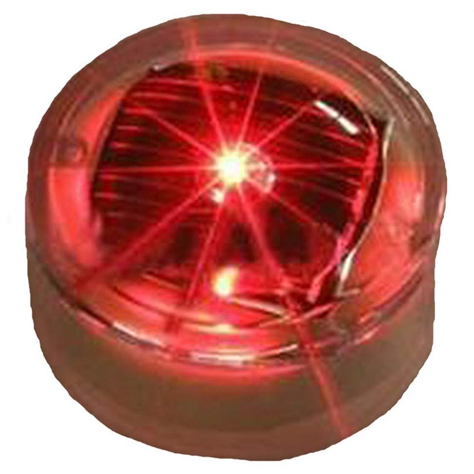 ドールマニアック断言する5色から選べる ソーラー 充電式 LED ライト 点滅 誘導灯 埋め込み式 メンテナンス用 (赤 (レッド))