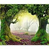 murando - Fototapete Wald 350x256 cm - Vlies Tapete - Moderne Wanddeko - Design Tapete - Wandtapete - Wand Dekoration - Bäume Landschaft grün 10110903-30