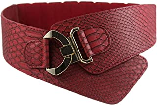 New Belt Fashion Woman Waist Belt PU Leather Snakeskin Pattern Oblique Elastic Personality Ladies Girls Super Wide Belts Very Strong and Durable (Color : Red)