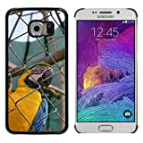 Just Phone Cover Hot Estilo teléfono móvil PC Carcasa rígida//M00139926Guacamayo Loro exótico Jaula de pájaros Zoo//Samsung Galaxy S6Edge (Not Fits S6)