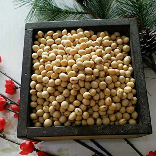 令和2年 熊本県産 大豆 9kg 業務用 品種:フクユタカ