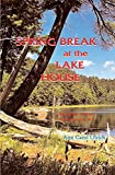 Spring Break at the Lake House (Annette Vetter Adventures Book 7)