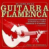 El Alma de la Guitarra Flamenca