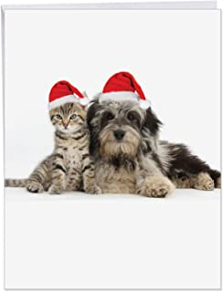 XL Merry Christmas Greeting Card - 'Copy Cats' Featuring a Puppy and Kitten in Santa's Hats for Christmas With Envelope (Large Size 8.5 x 11 Inch) - Funny Dog and Cat Happy Holidays Card J6596FXSG