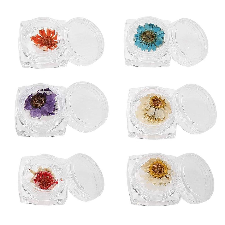 頻繁に検査物理ネイルアートdiyツール 6色ドライフラワー ネイルアートアクセサリーナチュラルドライフラワー装飾マニキュア 花ステッカー