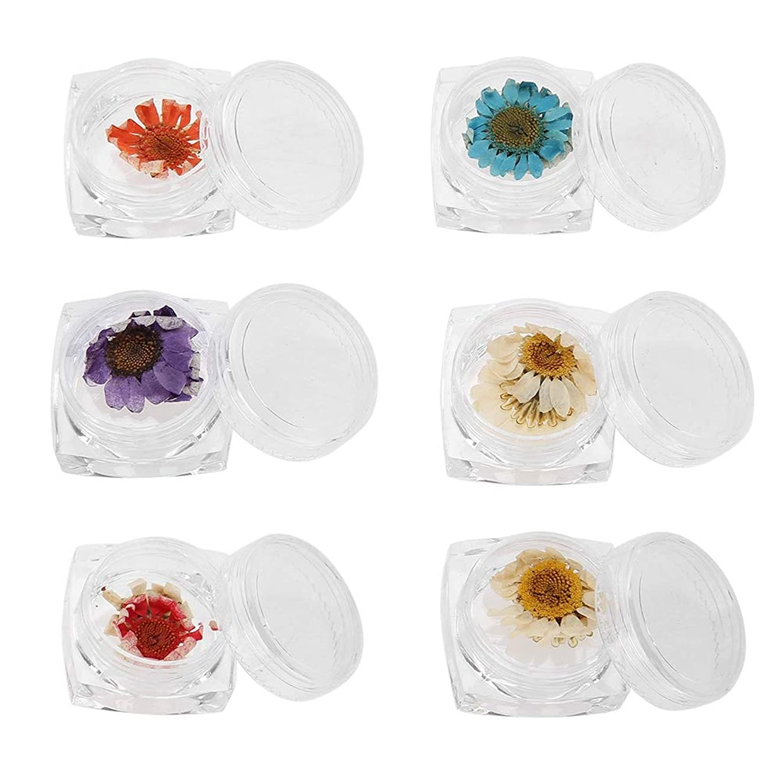 ネイルアートdiyツール 6色ドライフラワー ネイルアートアクセサリーナチュラルドライフラワー装飾マニキュア 花ステッカー