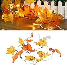 LEDMOMO Maple Leaf Lights, 10 LED Leaf String Lights Fairy Light Battery Operated Decor Thanksgiving Decoration (Warm White)