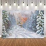Copo de Nieve fotografía de Navidad telón de Fondo Castillo Pintura al óleo Foto de Fondo Estudio Bosque de pinos niños telón de Fondo A1 10x7ft / 3x2.2m