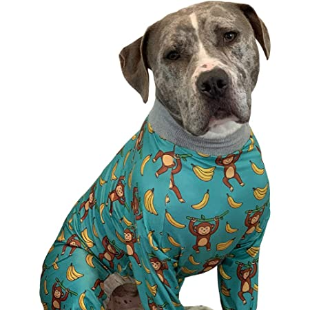 Pitbull DAD Men /& Women Cold Weather Ultimate Thermal Retention Face XXWK Halstuch//Kopftuch