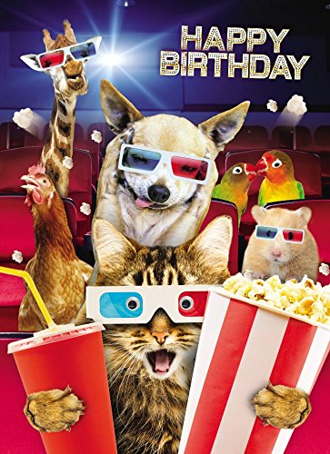 PopShots Studios Geburtstag Humor Grußkarte Googlies Wackelaugen Happy Birthday Crazy Kino 12x17cm