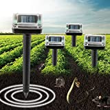 4 Pack Solar Powered Spike for Outdoor and Yard