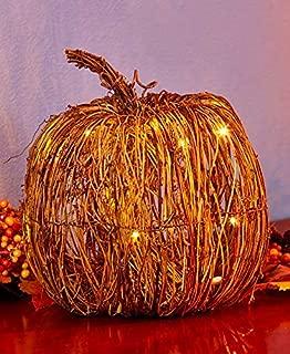 Best pre lit twig pumpkins Reviews