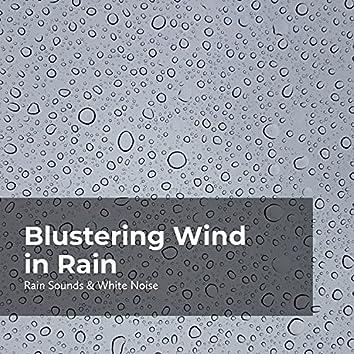 Blustering Wind in Rain