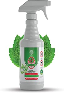 GERMOFIN Scour Organic Home Pest Control Spray - Peppermint Oil - Kills & Repels, Ants, Roaches, Spiders, and Other Pests Guaranteed - All Natural - Pet Safe - (Indoor/Outdoor Spray - 16oz