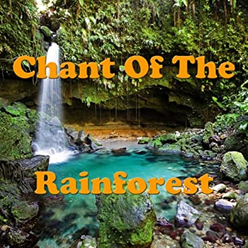 Chant Of The Rainforest