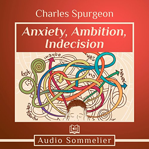 Anxiety, Ambition, Indecision audiobook cover art