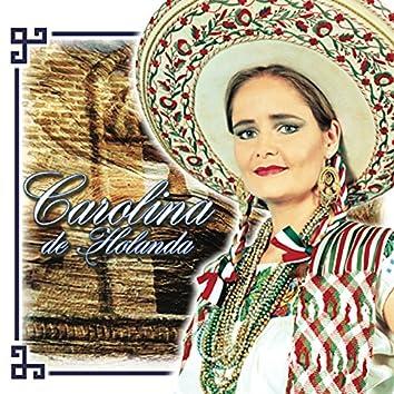 Sentimientos de Mexico