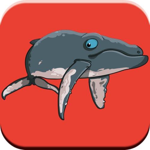 Fun Whale & My Dolphin Show-Spiel für Kinder Kostenlos Delphin-Sounds, Rätsel und passende Spiele für Jungen und Mädchen unter 6 Jahren