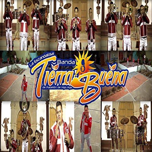 Banda Tierra Buena