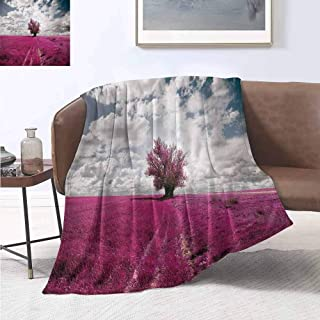 jecycleus Nature Comfortable Large Blanket Surreal Enchanted Oniric Meadow with Single Tree Idyllic Unusual Scene Microfiber Blanket Bed Sofa or Travel W60 by L50 Inch Fuchsia Petrol Blue