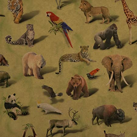 Details about  /Party Animals Birthday Lion Pattern Premium Roll Gift Wrap Wrapping Paper