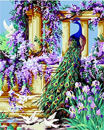 Fuumuui Lienzo de Bricolaje Regalo de Pintura al óleo para Adultos niños Pintura por número Kits Decoraciones para el hogar -Pavo Real y Paloma 16 * 20 Pulgadas