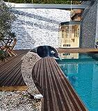 Cascade Inox 316 - Fuente para piscina (acero, 60 x 30 cm), diseño de delfín