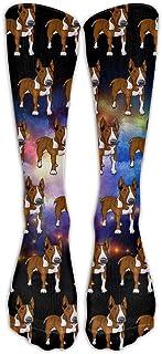 DaSOC Bull Terrier Dog Pattern Unisex Novelty Premium Calf High Athletic Socks Fashional Tube Stockings Size 6-10
