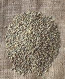 Getreide Landgetreide 25 Kg Ernte 2019