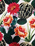 mediatex srl Tessuto Twill Stampa Digitale, Stoffe al Metro 100% Poliestere Altezza 140 Cm (N°904-Fiore Cactus)