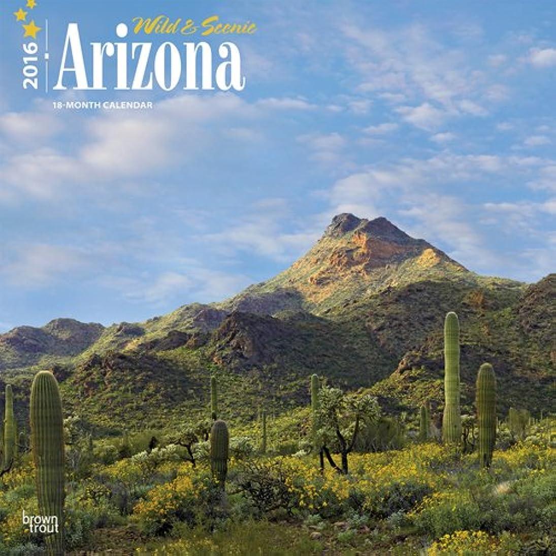 橋脚巨大な入学するWild & Scenic Arizona 2016 Calendar