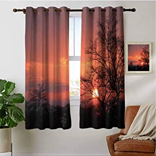 PRUNUSHOME Sunset at Kwando River Short Curtains, Microfiber 3 Layers High Density & Noise Reduction Fabric, Living Room Bedroom Window Drapes(Set of 2 Panels,42 by 36 Inch)