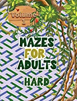 Mazes for adults: These volume 1 mazes give you hours of fun, stress relief and relaxation!