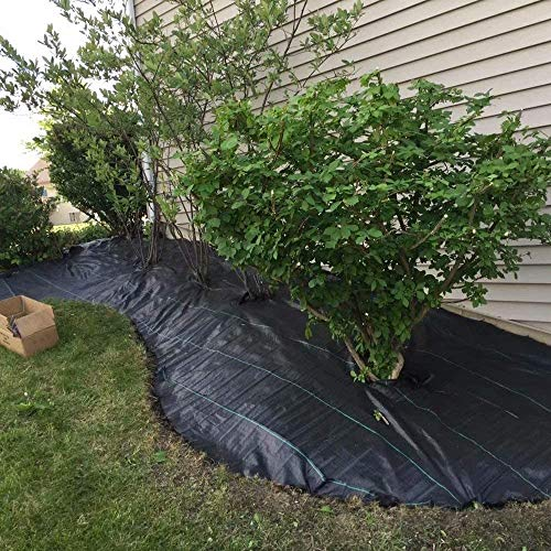 Black Woven Weed Control Fabric Heavy Duty Ground Cover Portable Package Membrane For Landscape Garden Roll Non-woven Lay Down Outdoor Garden Comes With 100 Nails (Size : 0.5 * 10m)