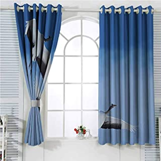 hengshu Bird Room Darkening Curtains for Bedroom Two Red Crowned Crane with Open Wings Flying in Clear Sky Japanese Animal Duo Bedroom Decor Blackout Shades W62 x L72 Inch Blue White Black