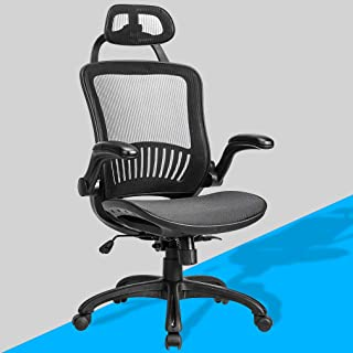 Ergonomic Office Chair Desk Chair Mesh Computer Chair with Lumbar Support Headrest Flip up Arms Executive Task Chair for Adults Women,Black