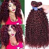 Malaysian Curly Hair 3 Bundles #99J Kinky Curly Hair Weaves 100Gram Each Bundle Red Wine Color Human Hair Deep Curl (14 16 18 inch, 99J)