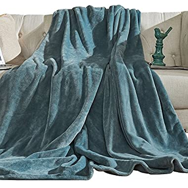 Aidear 100% Lightweight Summer Blanket, 350GSM Super Soft Breathable Fleece Plush Throw Blankets for Sofa, Couch, Air-Conditioner Room (43 x60 , Blue Gray)