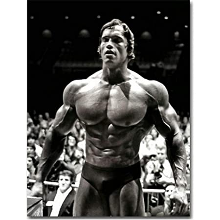 ARNOLD SCHWARZENEGGER POSTER FITNESS GYM QUOTE MUSCLES PRINT A3 A4 SIZE