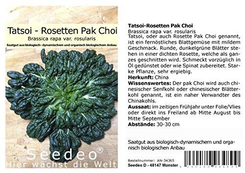 Seedeo® Tatsoi-Rosetten Pak Choi (Brassica rapa var. rosularis) 500 Samen BIO