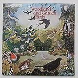 Woodland And Garden Birds