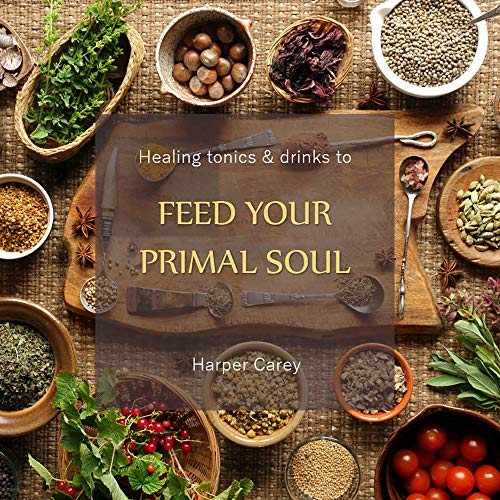 Healing Tonics & Drinks to Feed Your Primal Soul (English Edition)