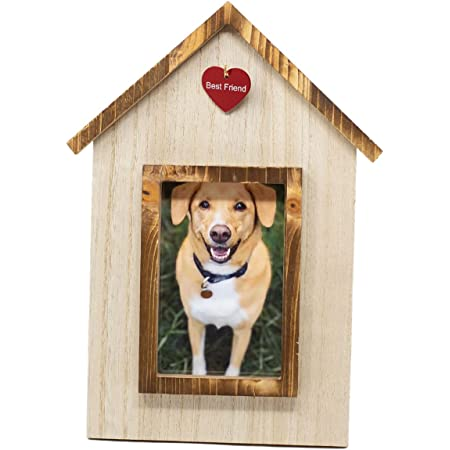 Chill With My Dog Gift For Dog Lover