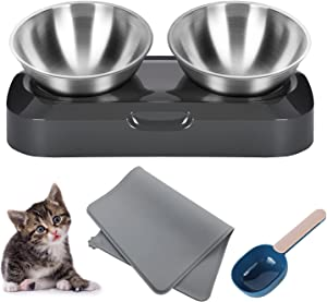 Petlex Elevated Cat Food Bowl with Silicone Feeding Mat and Food Spoon, 15° Raised Tilted Stainless Steel Cat Bowls for Food and Water, Easy to Clean and Dishwasher-Safe
