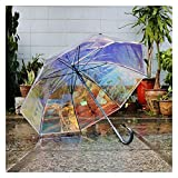 SXYRN Paraguas Paraguas Que Cambia de Color Mango Largo Paraguas Transparente de Arco Iris Paraguas de Lluvia y Sol Parasol Regalo para niña (Color: B)