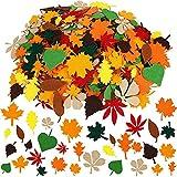 opamoo Adesivo Foglia D'acero, 528 Pezzi Autoadesivi in Feltro Adesivi Foglia di Feltro Decorazioni di Foglie d'Autunno Adesivi Glitterati per Ornamenti Artigianali per La Festa del Ringraziamento